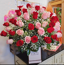 50 Pink & Red Roses