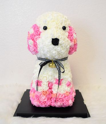 Pink & White Rose Dog